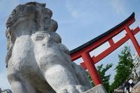 神奈川鎌倉 - B.D.C.10