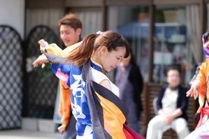 令和元年5月18日 常陸の国よさこい祭り <16> 美しき踊り子 - 常陸のT's BLOG