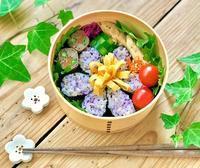 蔓性の植物と海苔巻きのお弁当とおうちごはん - おだやかなとき
