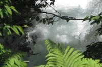 ドライブ日和🚙~「水源の森」辺り - 長女Yのつれづれ記