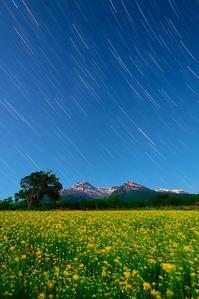 妙高の遅い春 - 四季星彩