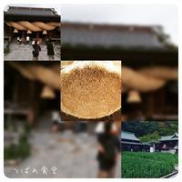 *宗像大社&宮地嶽神社詣り* - *つばめ食堂 2nd*
