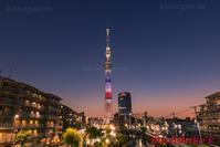 アメリカ大統領来日記念ライトアップの東京スカイツリー - 風景写真家 鐘ヶ江道彦のフォトブログ