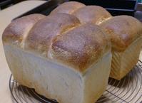 初の湯種パン - ~あこパン日記~さあパンを焼きましょう