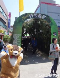 韓方文化祭り(한방문화축제)-2- - ポンポコ研究所