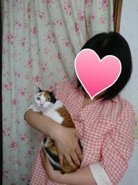 お試し→譲渡🤗 - 青梅ニャンだふる☆Life