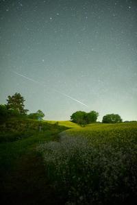 Starlink Satellite - **photo cafe**