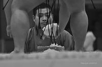 Terutuyoshi  @ Dosukoi - 東大寺が大好き