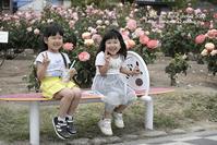 福山ばら祭り2019での出会い!-5 - 気ままな Digital PhotoⅡ