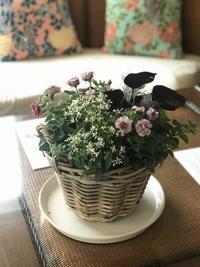 5月ガーデン&クラフツ寄せ植え教室  ① - 小さな庭 2