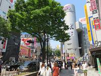 5月27日㈪の109前交差点 - でじたる渋谷NEWS
