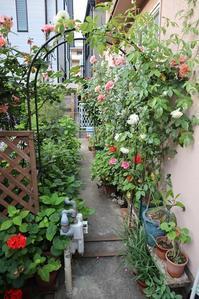ガーデニング、庭に咲いた花々たち、春は素晴らしい見事に咲いた薔薇の花 - 藤田八束の日記