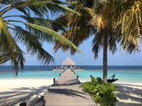 インド洋の楽園・モルディブ1 - NamiのプライベートルームⅡ