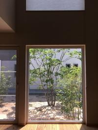 窓からの風景。(MI7) - スタジオエンネのブログ。