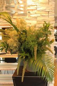 エニタイムフィットネスセンター赤羽北店様へ緑のアレンジスモークツリー - 北赤羽花屋ソレイユの日々の花