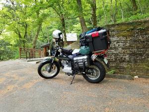 バンバンとNewテント試し張りへ(小滝沢キャンプ場) - いつも通り…無事カエル!