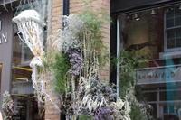 """花の季節 in London - 英国メディカルハーバリスト&アロマセラピストのブログ""""Herbal Healing 別館"""""""