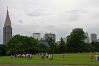 今日の新宿御苑 - お散歩写真     O-edo line