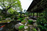 実光院の春の花たち - 花景色-K.W.C. PhotoBlog