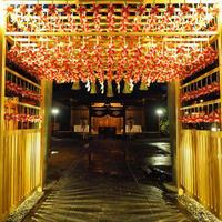 川越氷川神社 - キモいダぁ~Xの戦艦ポチョムキン
