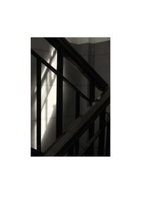 踊り場 - looking for Light
