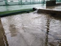 冠水状態 - クローバービレッジのつぶやき