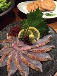 新宿で美味しい魚をいただきました♪ - 自然と遊楽