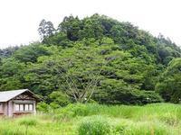 夏日から一変、涼しい一日 - 千葉県いすみ環境と文化のさとセンター