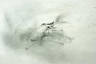 《(むかしむかし)から飛んでいた(ムカシトンボ)。》 - 『ヤマセミの谿から・・・ある谷の記憶と追想』