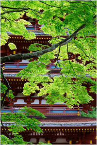 五重塔 - HIGEMASA's Moody Photo
