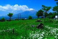 令和元年5月の富士(26)誓いの丘からの富士 - 富士への散歩道 ~撮影記~