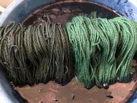 教室用の糸を藍で染めています。桜の下染めで差を出したい。 - 手染めと糸のワークショップ