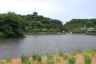 横浜市三渓園は広大な景観の日本庭園 - 一場の写真 / 足立区リフォーム館・頑張る会社ブログ