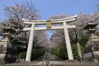 宗忠神社・竹中稲荷神社・金戒光明寺の桜 - ぴんぼけふぉとぶろぐ2
