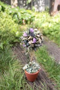 6月の1dayレッスンのお知らせです - driedflower arrangement ✦︎ botanical accessory ✦︎ yukonanai ✦︎ gland*