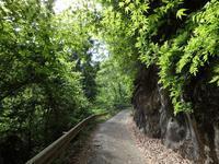 『横谷峡四つ滝散策紅葉滝』 - 自然風の自然風だより