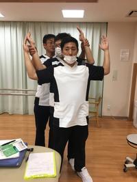 腰の整形外科テスト 勉強会 - たてやま整形外科クリニック スタッフブログ