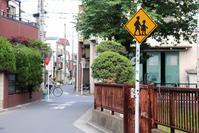 足立区の街散歩388「葛飾篇」 - 一場の写真 / 足立区リフォーム館・頑張る会社ブログ