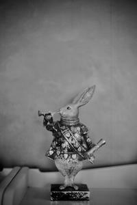✿Alice's rabbit - ✿happiness✿