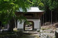 古知谷阿弥陀寺 - Taro's Photo