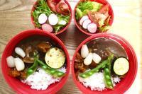カレー弁当とパンダ - オヤコベントウ