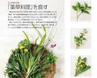 食の企画「薬草料理」を食す - HISHIO ARTS INFORMATION
