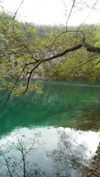 クロアチア6日目プリトヴィッツ湖へ - てんねん生活 ARAKOKI