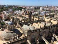 スペイン旅19 ヒラルダの塔にのぼる - Oga-memo ♪