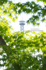 新緑と鉄塔 - It's only photo 2