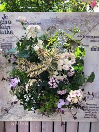En el primer día de junio - Gardener*s Diary