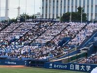 六大学野球 慶早戦 - 浦安フォト日記