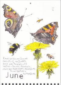 6月-花やチョウ、ミツバチたちが活発! - ブルーベルの森-ブログ-英国のハンドメイド陶器と雑貨の通販