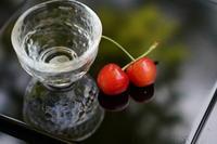 「初夏の実を肴に」 - ほぼ京都人の密やかな眺め