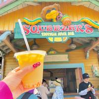 【ディズニー】夏のディズニー相棒ドリンク!ランドで飲めるマンゴータピ♡ - ひめぴょんぶろぐ